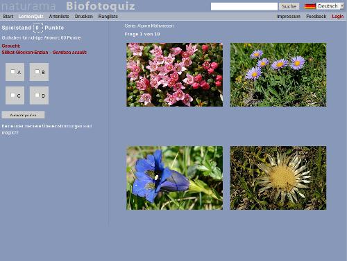 pflanzenbestimmung per quiz trainieren herbarium online blog. Black Bedroom Furniture Sets. Home Design Ideas